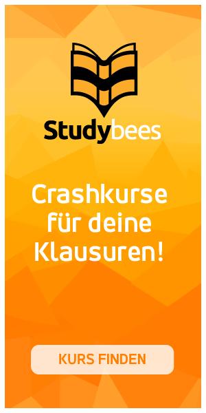 Studybees Crashkurse