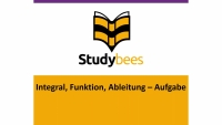 Aufgabe: Integral, Funktion, Ableitung