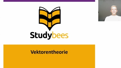 Vektorentheorie