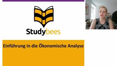 Einführung in die Ökonomische Analyse