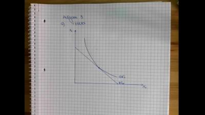 Aufgabe Einkommens- und den Substitutionseffekt Hicks a