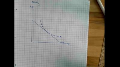Aufgabe Einkommens- und den Substitutionseffekt Slutsky