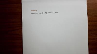 Aufgabe Nutzenmaximierung, Standard Cobb-Douglas