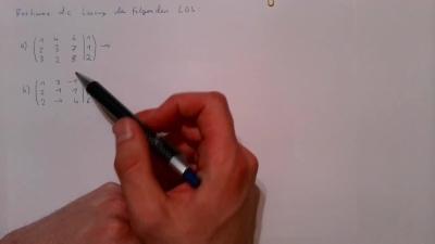Aufgabe Lineare Algebra - Gleichungssysteme