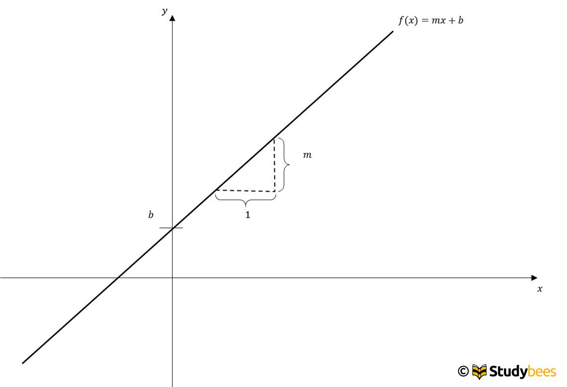 lineare funktion erkl rt studybees. Black Bedroom Furniture Sets. Home Design Ideas