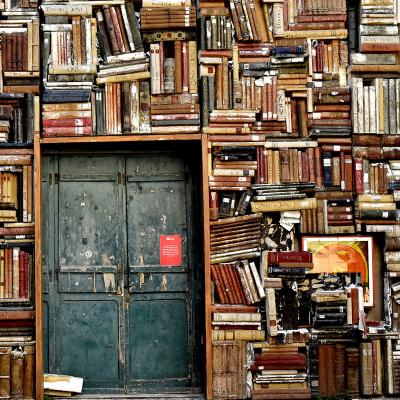 Bibliothekswesen