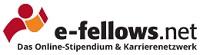 Berichterstattung über Studybees bei e-fellows